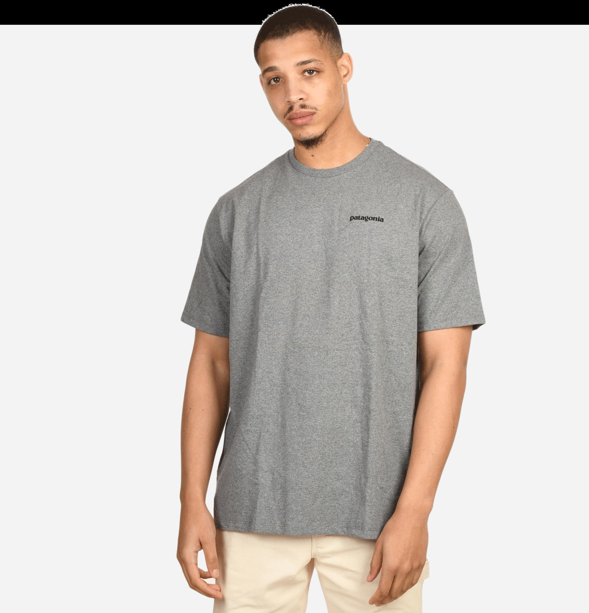 P-6 Logo T-shirt Gravel...