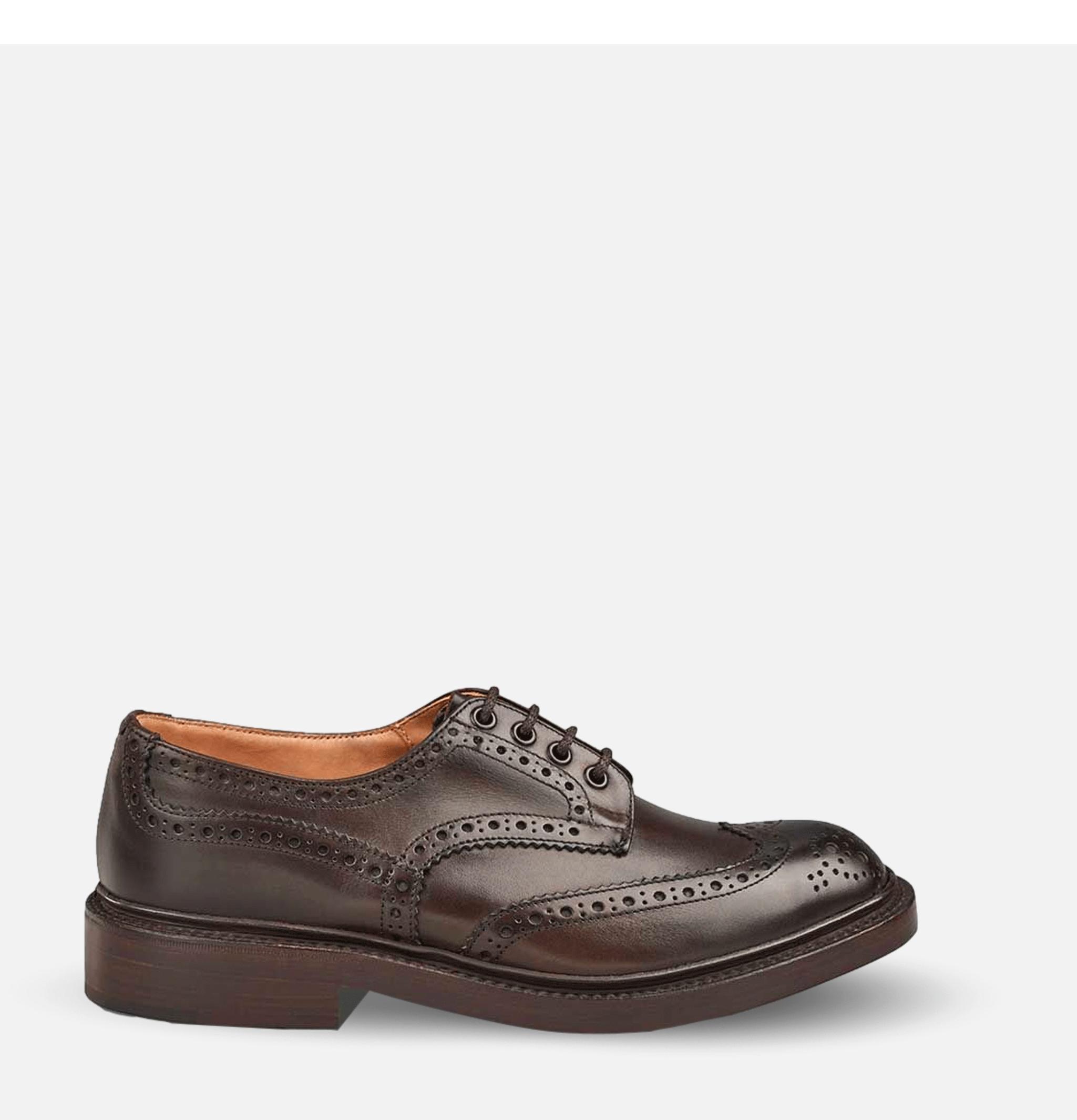Shoes Bourton Espresso